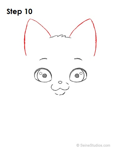 Draw a Cartoon Cat 10