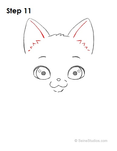 Draw a Cartoon Cat 11