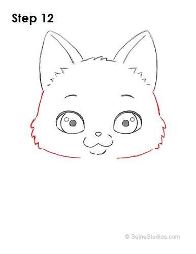 Draw a Cartoon Cat 12